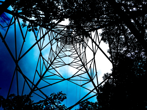 鉄塔 木陰 葉 影絵 高圧送電線