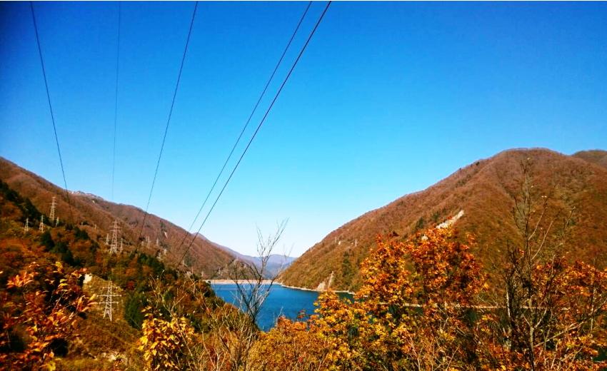 御母衣湖と紅葉が美しい荘川の現場から
