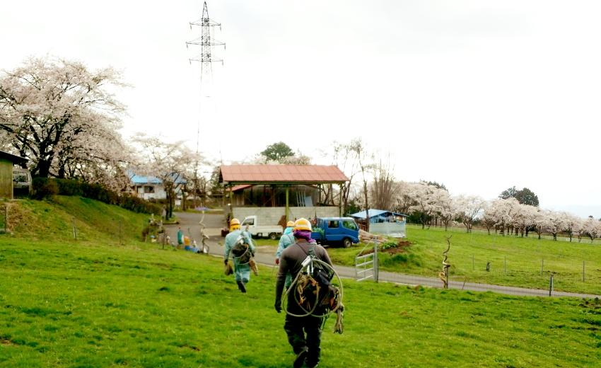牧場とラインマン